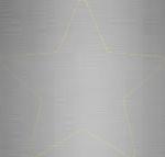 cvb-sponsor-star-silver